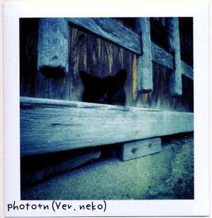 20060528_marked.jpg