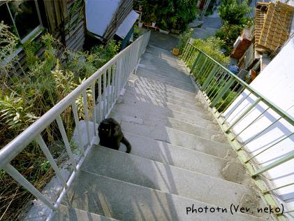 20061015_marked.jpg