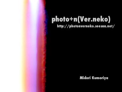 pvn001.jpg